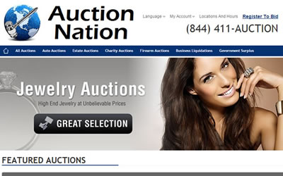 Auction Nation Web Design